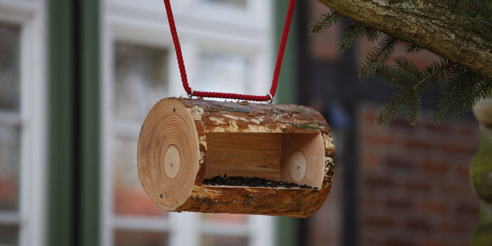 bird-feeder-diy